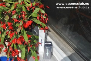 Parfémy u kaktusu-essensclub