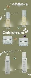 colostrum flyer